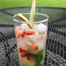 Strawberry Rhubarb Mojito